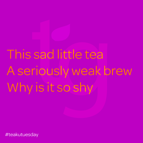 This sad little tea, A seriously weak brew, Why so shy